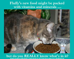 What's REALLYin Pet Food?